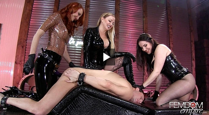 FemdomEmpire_-_Alexandra_Snow,_Kendra_James,_Lexi_Sindel_-_Femdom_All-Star_Gang_Bang.png