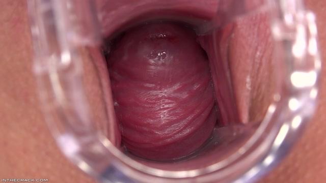 PornoVideosHub.com_-_InTheCrack_E1143_-_Amirah_Adara_-_Outdoor_Cervix.00010.jpg